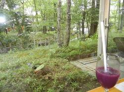 お庭とぶどうジュース.jpg