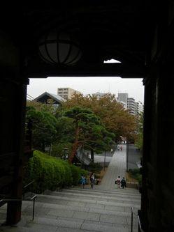 護国寺4.jpgのサムネール画像