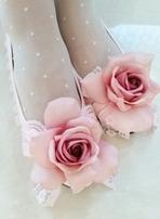 ピンク×ローズ薔薇